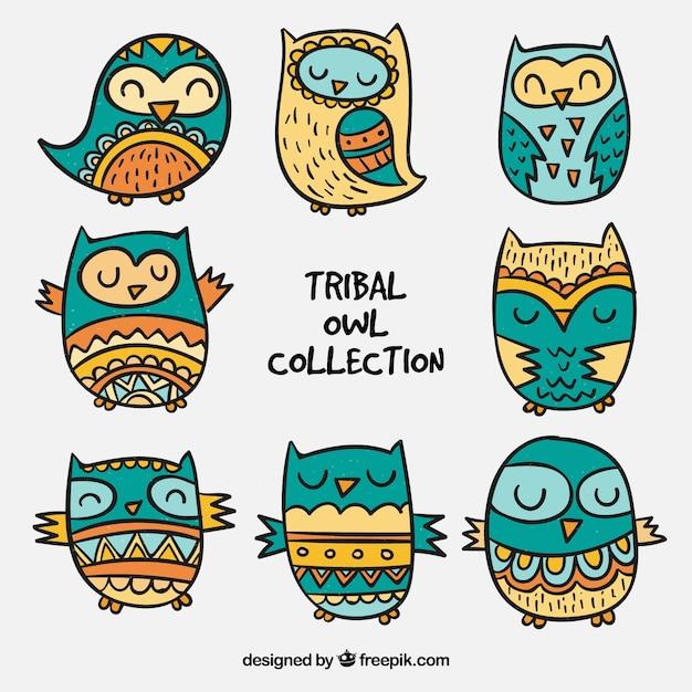 Collezione gufo tribale Vettore gratuito