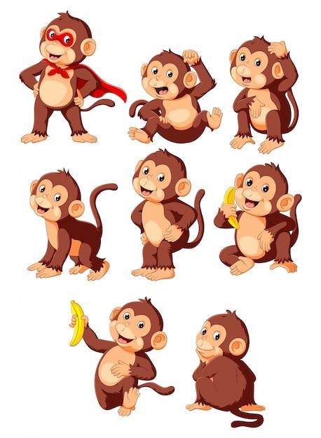 Collezione simpatico cartone animato scimmia che indossa il costume da supereroe Vettore Premium
