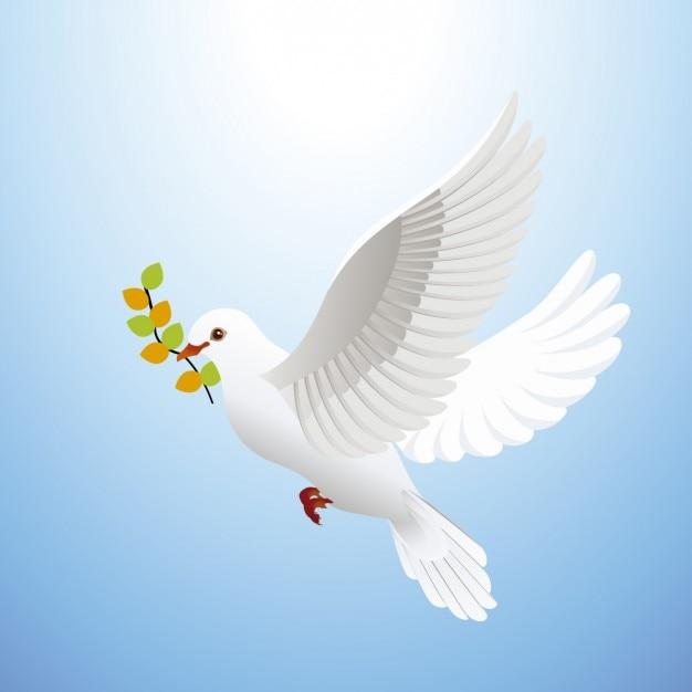 Favorito Colomba della pace | Scaricare vettori gratis OV59
