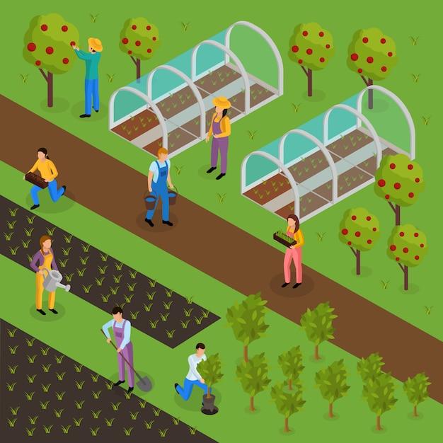 Composizione isometrica di vita di agricoltori ordinari con caratteri umani di verdi in uniforme con piante e serra Vettore gratuito