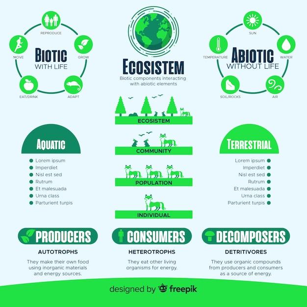 Concetto di infografica moderna dell'ecosistema Vettore gratuito