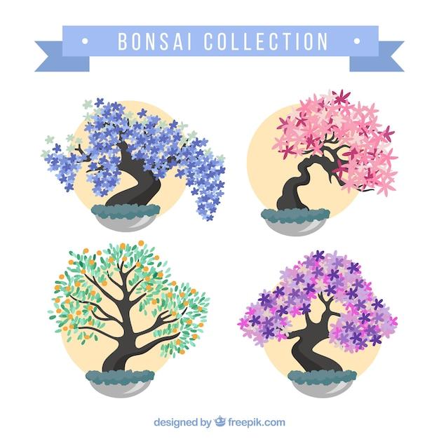 Confezione da bonsai colorato Vettore gratuito