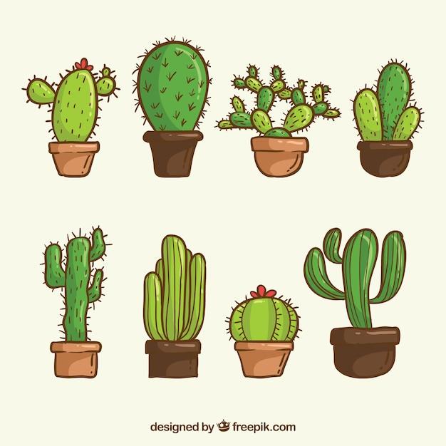 Confezione di cactus disegnati a mano Vettore gratuito