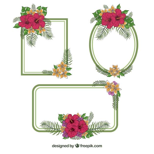 Confezione di cornici decorative con fiori disegnati a for Fiori disegnati