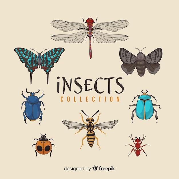 Confezione di insetti disegnati a mano Vettore gratuito