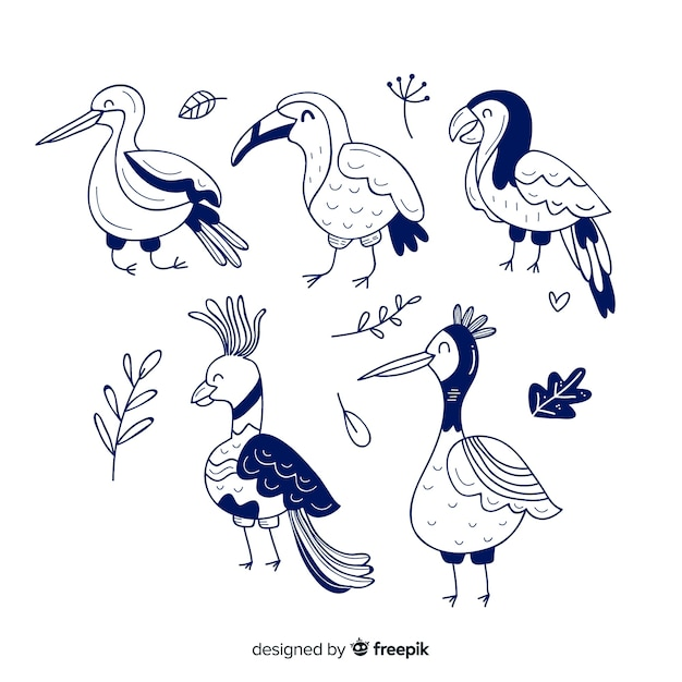 Confezione di uccelli esotici disegnati a mano Vettore gratuito