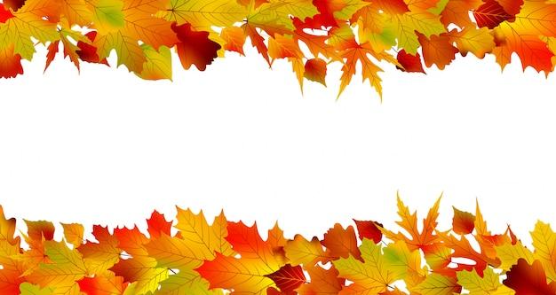 Confine autunnale colorato a base di foglie. Vettore Premium