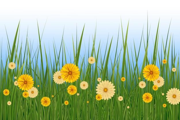 Confine dell'erba e dei fiori della primavera, elemento della decorazione della cartolina d'auguri di pasqua. primavera o estate sfondo, giornata di sole con fiori ed erba Vettore Premium