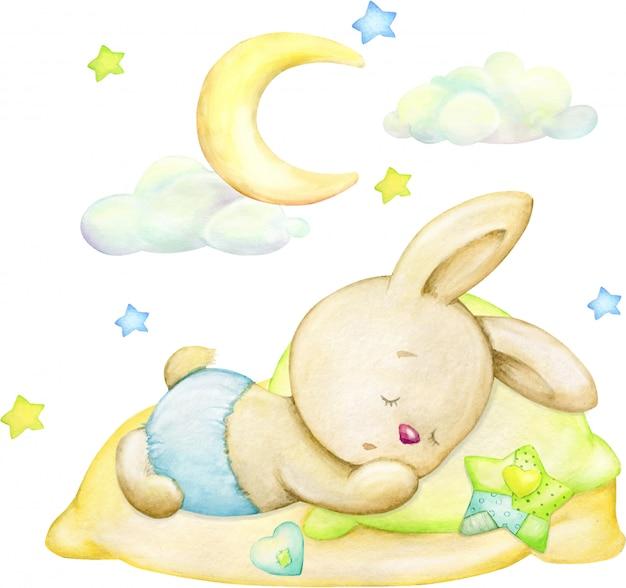 Coniglietto addormentato, luna, stelle, nuvole. concetto dell'acquerello su uno sfondo isolato. Vettore Premium