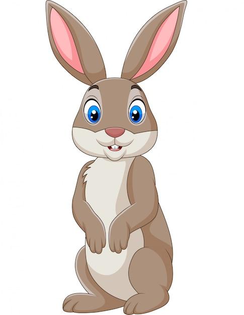 Coniglio felice del fumetto isolato su fondo bianco Vettore Premium
