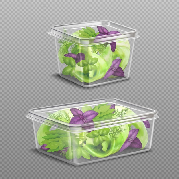 Conservazione di plastica fresca dell'insalata trasparente Vettore gratuito
