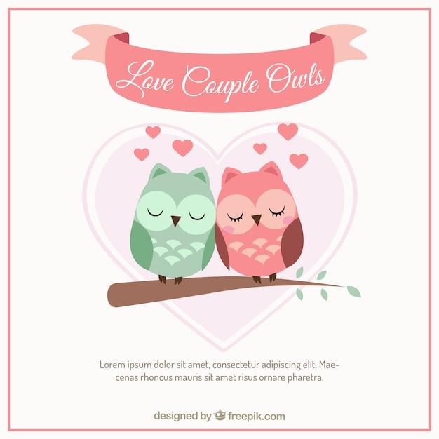 Coppie di amore gufo Vettore gratuito