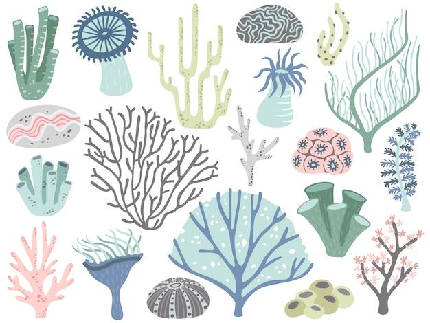 Coralli e alghe dell'acquario. flora di corallo dell'oceano marino, alghe subacquee della decorazione e insieme differente di vettore del fumetto delle piante acquatiche Vettore Premium