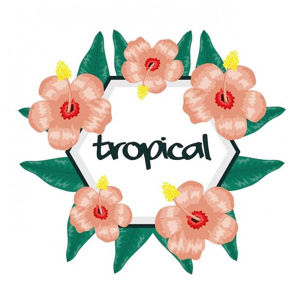 Cornice circolare con fiori e foglie tropicali Vettore Premium
