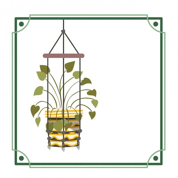 Cornice con pianta d'appartamento su grucce macramè Vettore Premium