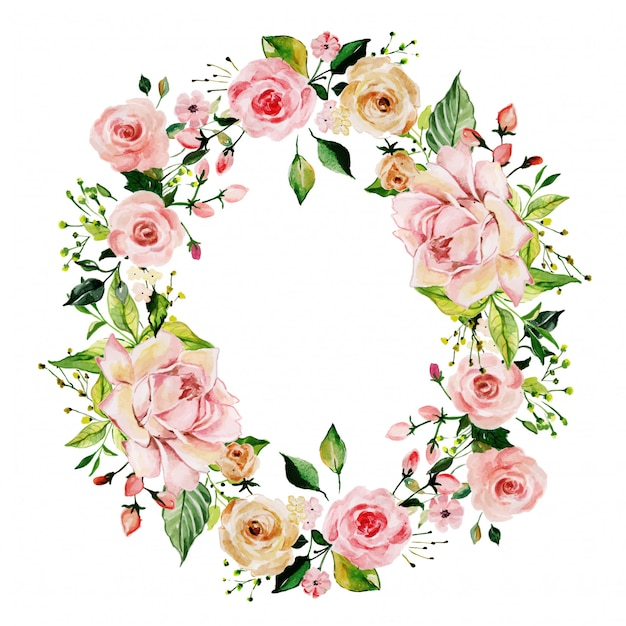 Cornice floreale rosa rosa dell'acquerello Vettore Premium