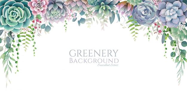 Cornice succulenta, bordo su sfondo bianco. tutti gli elementi sono isolati e modificabili. Vettore Premium