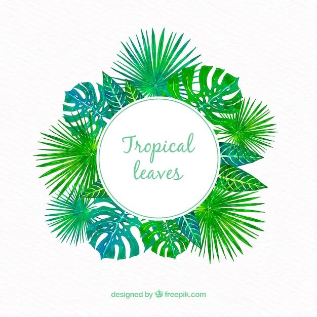 Cornice tropicale con foglie diverse Vettore gratuito