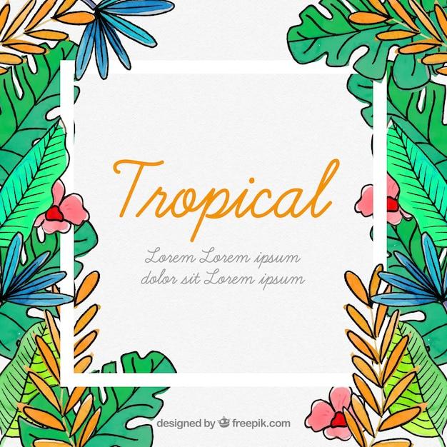 Cornice Tropicale Con Foglie E Fiori Scaricare Vettori Gratis