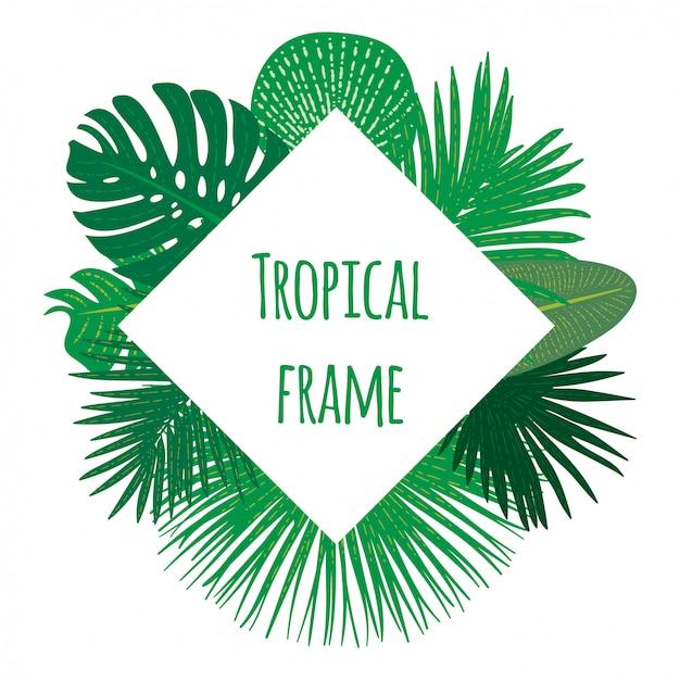 Cornice tropicale disegnata a mano Vettore Premium