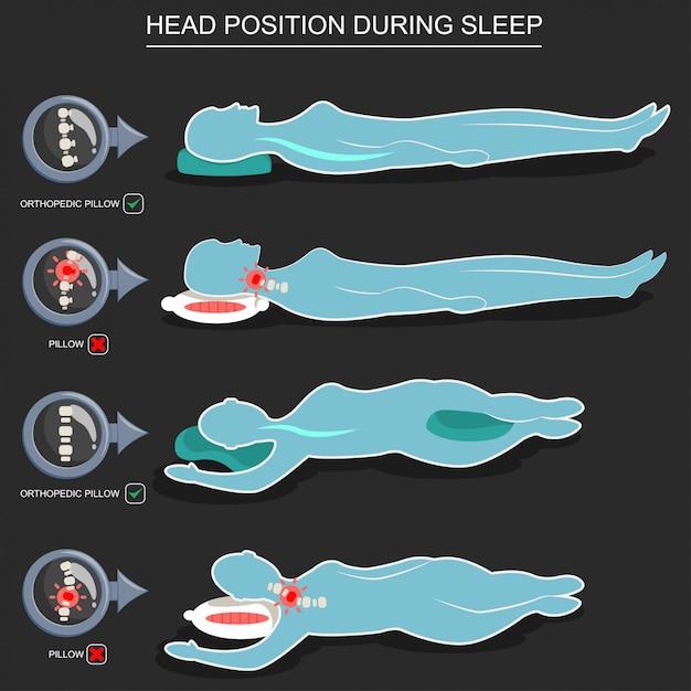 Cuscini ortopedici per la corretta posizione della testa durante il sonno Vettore Premium