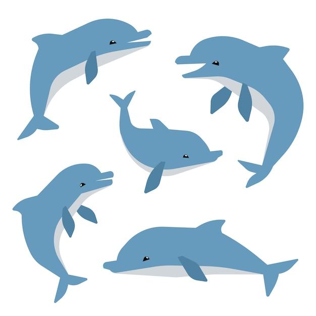 Delfini svegli in diverse pose vector illustation. delfini isolati su sfondo bianco Vettore Premium