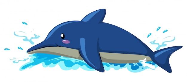 Delfino galleggiante su sfondo bianco Vettore gratuito