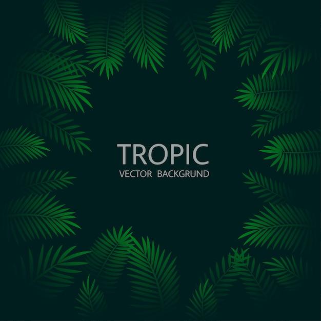 Design con foglie di palma tropicali esotiche e scritte. Vettore Premium