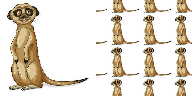 Design con meerkat senza cuciture Vettore gratuito