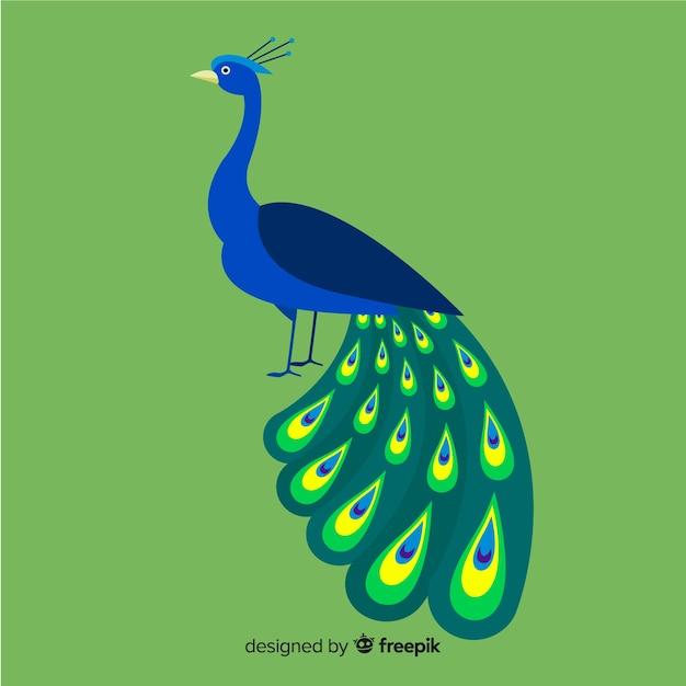 Design creativo di pavone Vettore gratuito