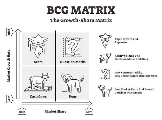 Diagramma a matrice bcg Vettore Premium