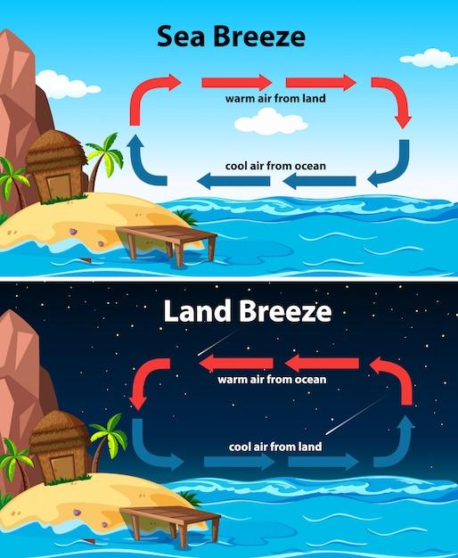 Diagramma che mostra la brezza marina e terrestre Vettore gratuito