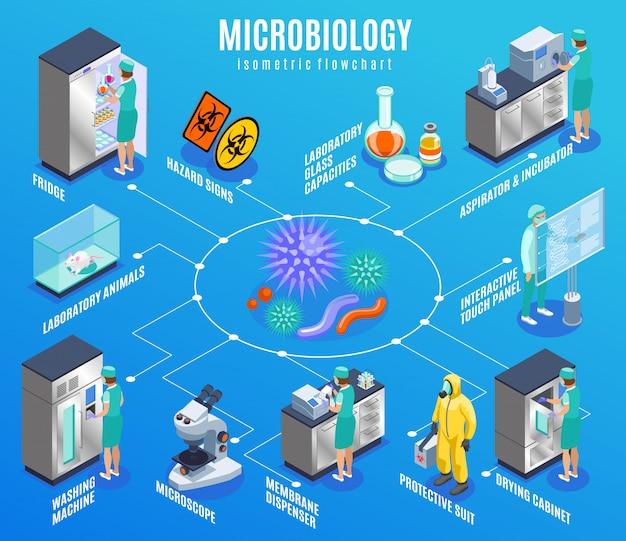 Diagramma di flusso isometrico di microbiologia con il vestito protettivo dell'erogatore della membrana del microscopio della lavatrice degli animali da laboratorio del frigorifero e l'altra illustrazione di descrizioni Vettore gratuito