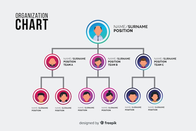 Diagramma organizzativo Vettore gratuito
