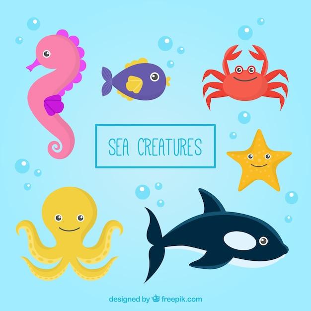 Disegnati a mano belle creature marine pacco Vettore gratuito