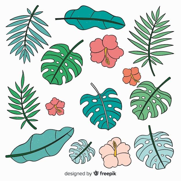 Disegnati a mano fiori e foglie tropicali Vettore gratuito