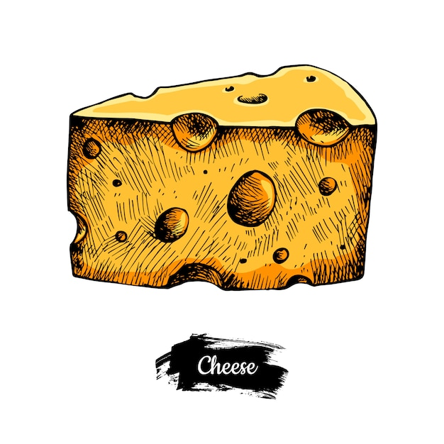 Disegnato a mano di formaggio. Vettore Premium