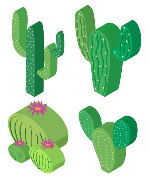 Disegno 3d per piante di cactus scaricare vettori gratis for Disegno 3d gratis