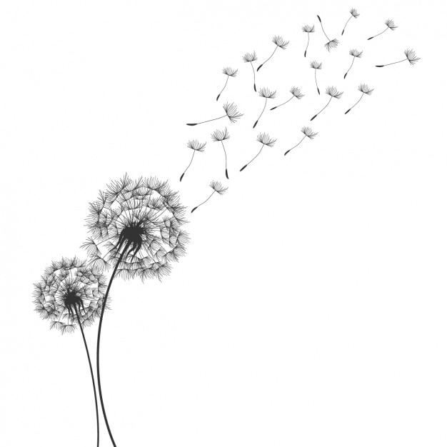 Disegno dandelion sfondo Vettore gratuito