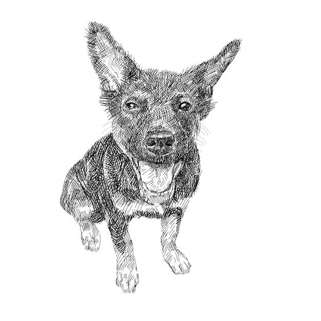 Disegno Del Cane Nero Seduto Su Sfondo Bianco Scaricare Vettori