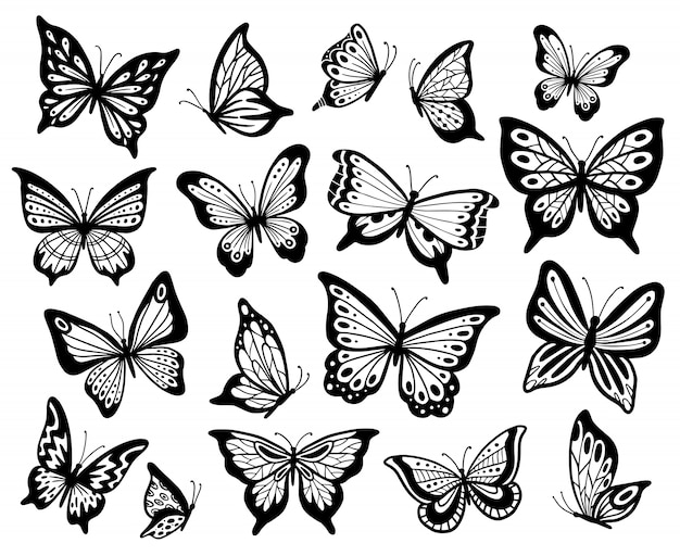 Disegno di farfalle la farfalla dello stampino, le ali del lepidottero e gli insetti di volo hanno isolato l'insieme dell'illustrazione Vettore Premium