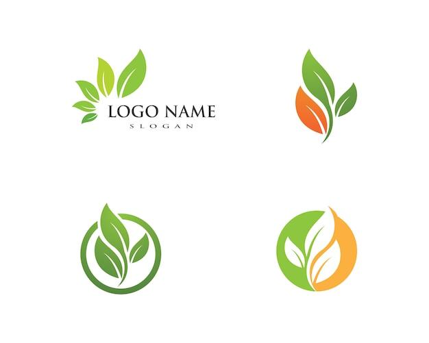Disegno di marchio di vettore di foglia dell'albero Vettore Premium