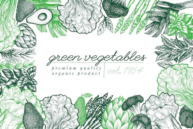 Disegno di sfondo vegetale verde. illustrazione di cibo di vettore disegnato a mano. cornice vegetale di stile inciso. Vettore Premium