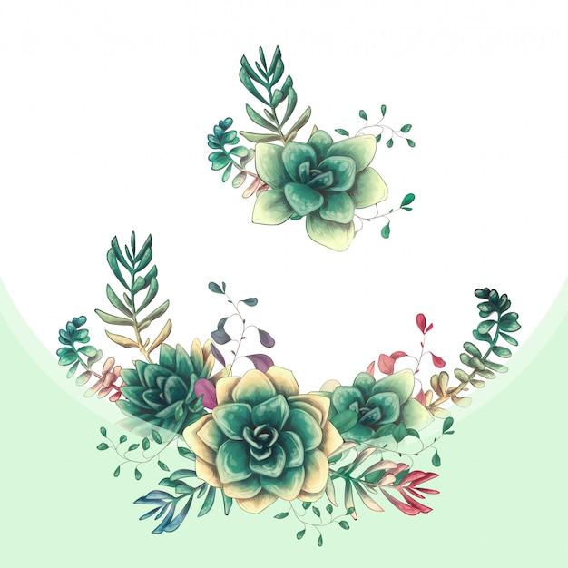 Disegno di vettore di succulente colorato verde Vettore Premium