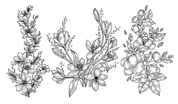 Disegno e schizzo della mano dei fiori Vettore Premium