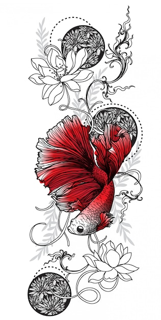 Disegno e schizzo siamesi del pesce di combattimento di arte del tatuaggio Vettore Premium