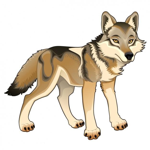 Disegno lupo colorato Vettore gratuito