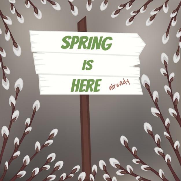 Disegno primavera con rami di salice figa scaricare for Rami di salice
