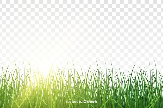 Disegno realistico del bordo dell'erba verde Vettore gratuito