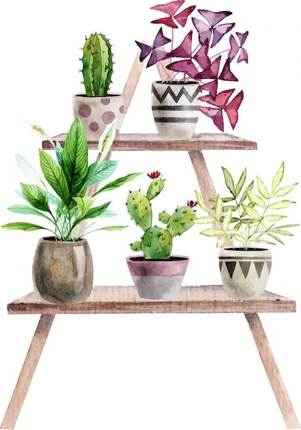 Disposizione con piante d'appartamento acquerellate dipinte a mano Vettore Premium
